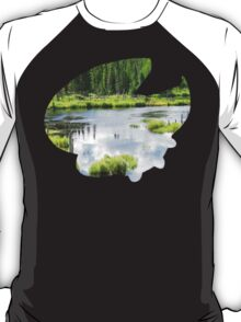 Lotad used Absorb T-Shirt