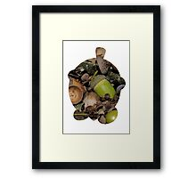 Seedot used Nature Power Framed Print