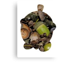 Seedot used Nature Power Canvas Print