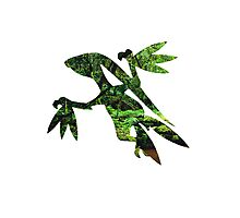 Grovyle used Leaf Blade Photographic Print