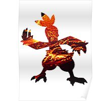 Combusken used Fire Spin Poster