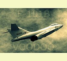 F-101B Voodoo Throw Pillow by Betty Northcutt