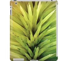Rainbow Spikes iPad Case/Skin