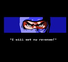 Ninja Gaiden Revenge by deepfriedbacon