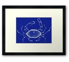 Ghost crab Framed Print