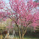 Swing Into Spring by Ginny York