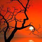 Sunset Pillow by Igor Zenin