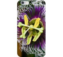 Passion...A Different Point of View iPhone Case/Skin