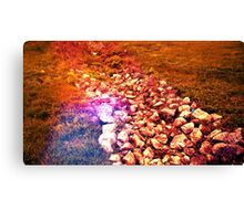 Blood Red Stone Canvas Print