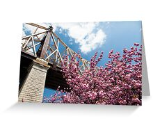 Cherry Blossoms Under the Queensborough Bridge Greeting Card