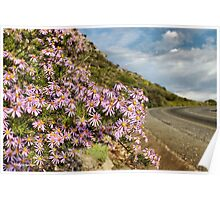 ON THE WAY TO NIEUWOUDTVILLE - NAMAQUA - SOUTH AFRICA Poster