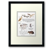 Diet of the Barn Owl Framed Print