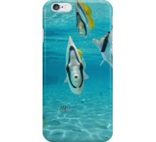 Tropical fish Pacific double-saddle butterflyfish iPhone Case/Skin