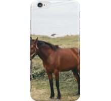 Alone Horse iPhone Case/Skin
