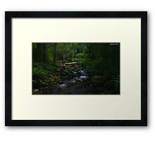 Groom River Framed Print