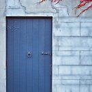 Door in the Wall by Chris Cobern
