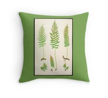 Ferns of Great Britain (19th Century) Throw Pillow