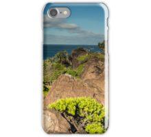 Double Island Point Headland iPhone Case/Skin