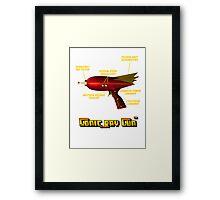 Sonic Ray Gun Framed Print