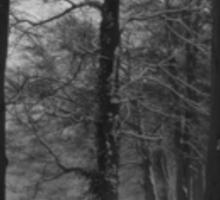 Bleak Winter #1 Sticker