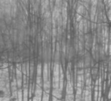 Bleak Winter #2 Sticker