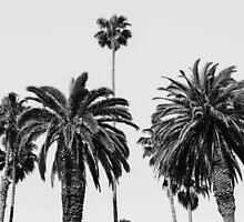 Typical California by anna3lizabeth