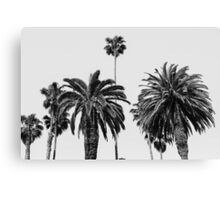 Typical California Canvas Print