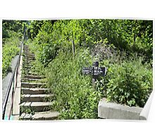 Hiking Trail in Kamakura, Japan Poster