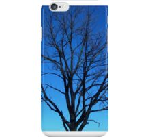 Forest, Tree, Nature, Landscape,  iPhone Case/Skin