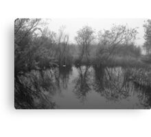 pond bw Canvas Print