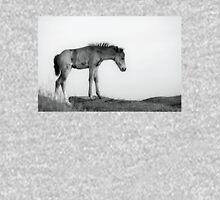 Skinny & Lonely Horse Hoodie