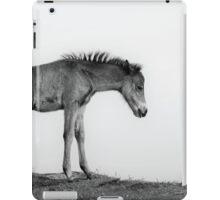 Skinny & Lonely Horse iPad Case/Skin