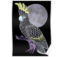Black Cockatoo Moon Poster
