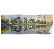 Sunrise over 'The Buttermere Pines' Poster