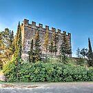 Castell de Balsareny (Catalonia) by Marc Garrido Clotet