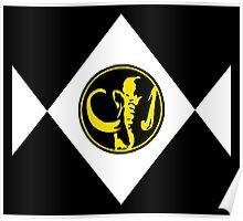 Mighty Morphin Power Rangers Black Ranger 2 Poster