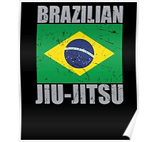 Brazilian Jiu Jitsu (BJJ) Poster