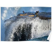 Wooden Log At The Tip Of American Falls | Niagara Falls, New York Poster