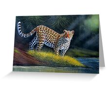 oil paint art designs of Leopard at the river Greeting Card