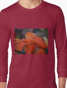 Autumn Foliage in Australia Long Sleeve T-Shirt