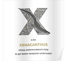 X is for Xenacanthus Poster