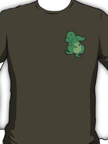 T-Rex Dinosaur Rwar T-Shirt