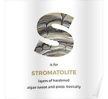 S is for Stromatolite Poster