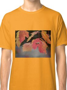 Autumn Foliage in Australia 2 Classic T-Shirt