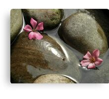 Flowers in the brook Canvas Print