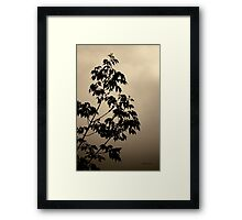 Branches and Sky - Toned Framed Print
