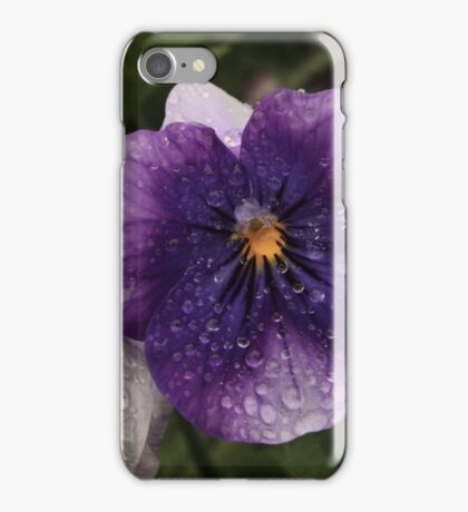 Spring Rain On Pansy iPhone Case/Skin