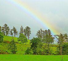 A Rainbow Over Irish Fields by Fara
