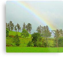 A Rainbow Over Irish Fields Metal Print