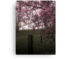 Pastoral Blossoms Canvas Print